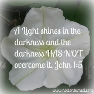 John 1 5 Beauty Pian Light Darkness